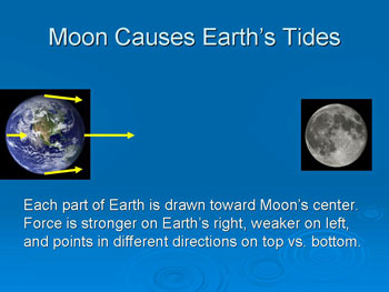Moon Causes Earth's Tides